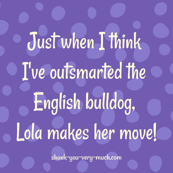 A text graphic that says 'just when I think I've outsmarted the English bulldog, Lola makes her move!'