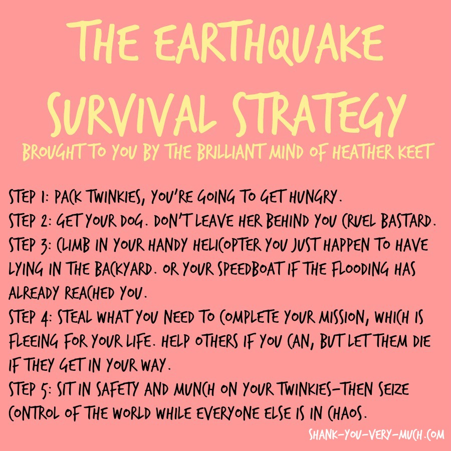 A survival strategy outlining the plan