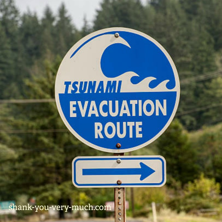 A tsunami evacuation street sign with directional arrow