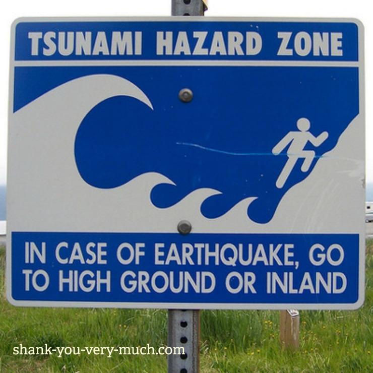 A tsunami hazard zone street sign
