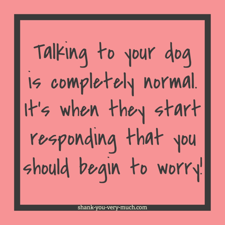"""A text box that says """"Talking to your dog is completely normal. It's when they start responding that you have to worry!"""""""