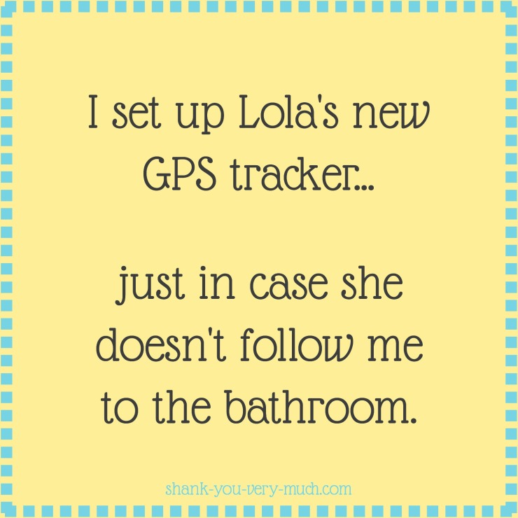 a text box that reads 'I set up Lola's new GPS tracker... just in case she doesn't follow me to the bathroom.'