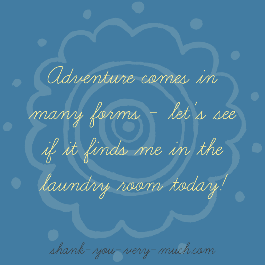 'Adventure comes in many forms - let's see if it finds me in the laundry room today!'