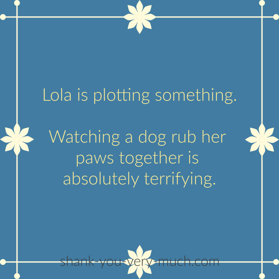 Lola is plotting something. Watching a dog rub her paws together is absolutely terrifying.